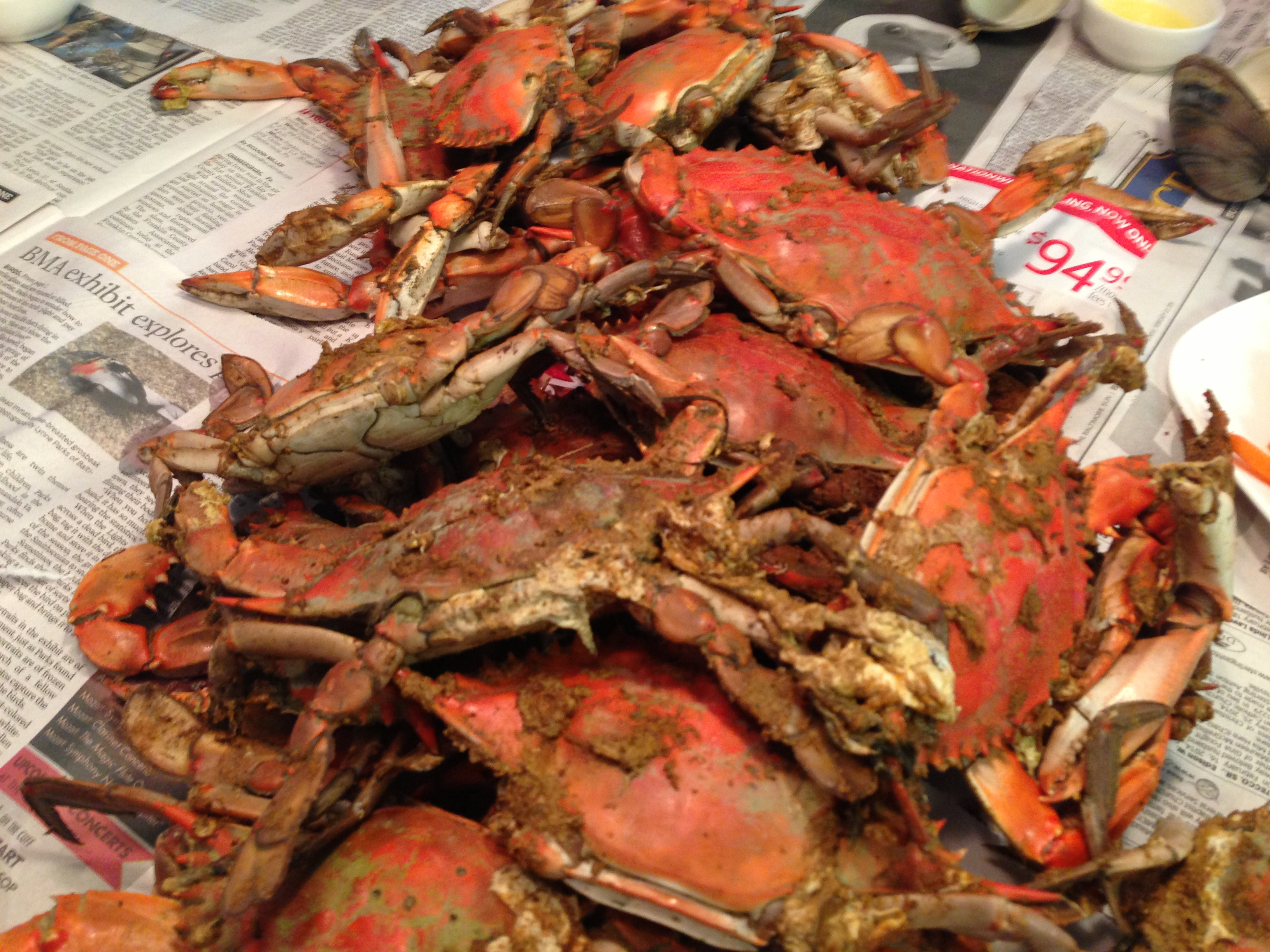 Steamed Blue Crab Big daddys recipes steamed maryland blue crabs